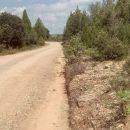 camino_cid_3